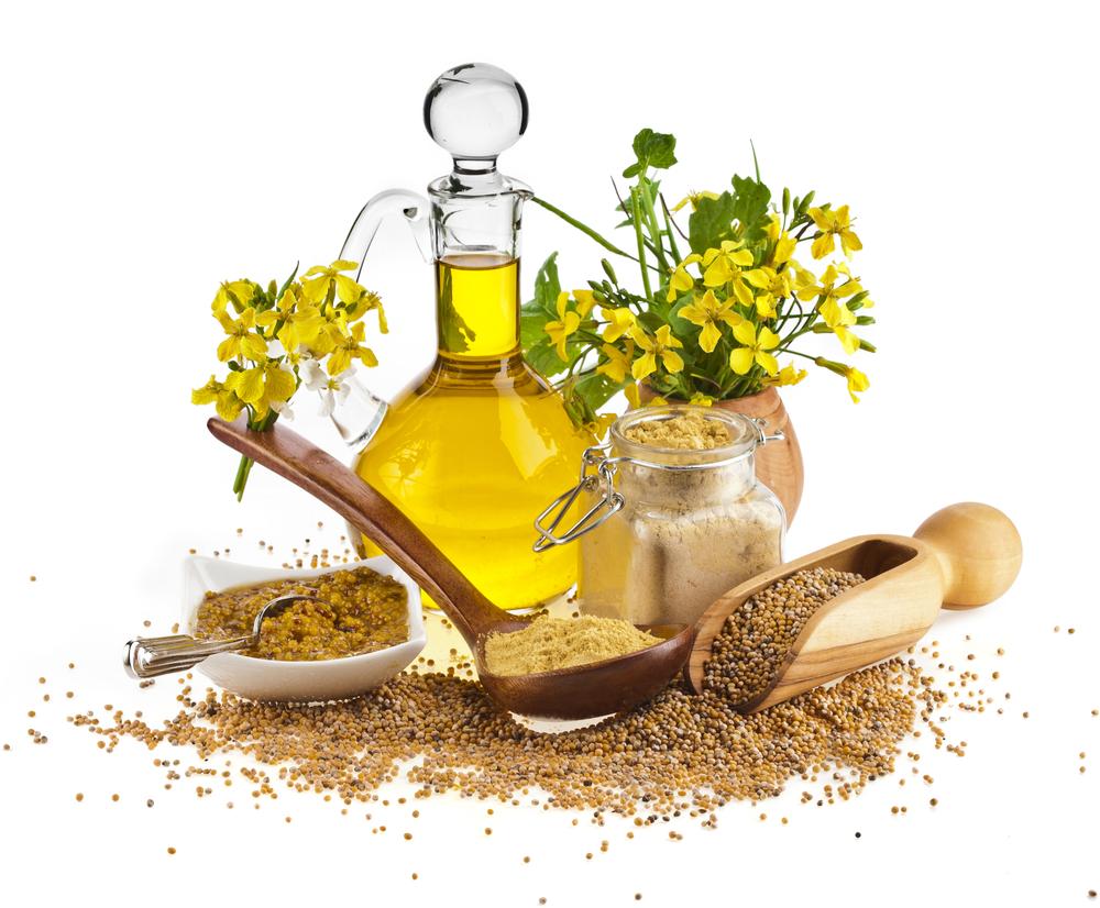 Горчичное масло полезные свойства и противопоказания, польза и вред, как принимать
