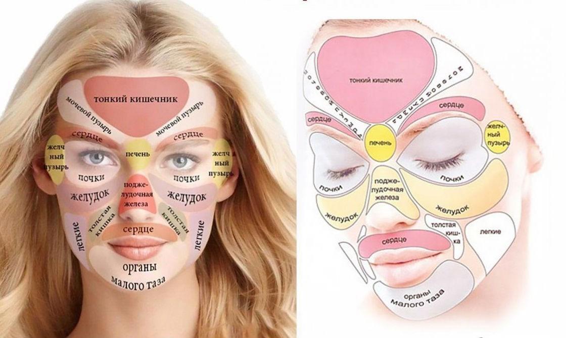 Китайская диагностическая карта лица: прыщи расскажут о ваших болезнях, состоянии организма